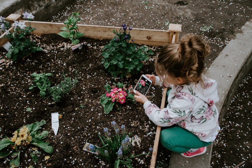 teaching sustainability thru gardening