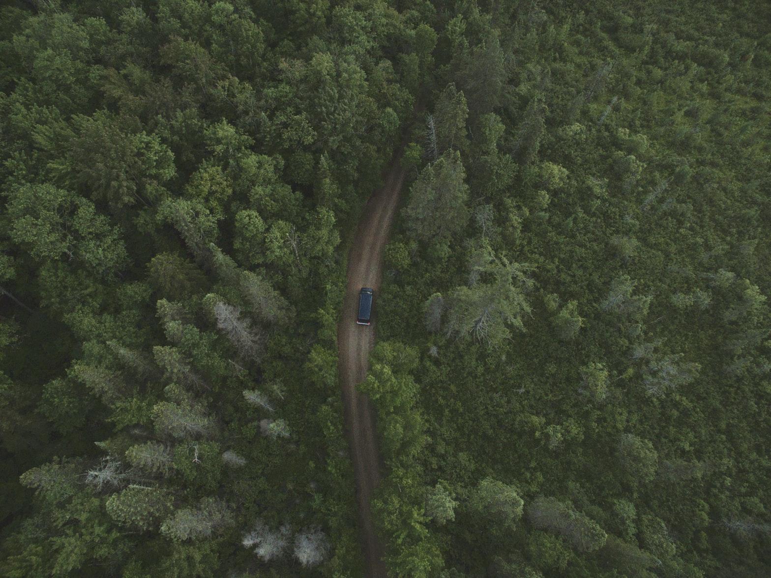 road trip nature